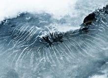 Winter stream Stock Image