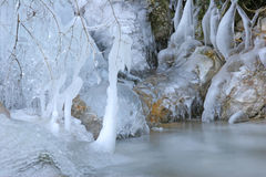 Winter Stream Stock Photography