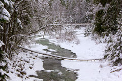 Winter Stream. A stream in winter, covered in snowfall and ice Stock Photos
