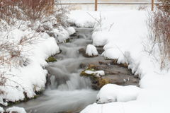 Winter stream. Stream flowing with snow capped rocks back ground of fence and trees royalty free stock images