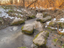 Winter stream in the forest Royalty Free Stock Photo
