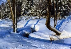 Winter stream. Illustrations,snow landscapes royalty free stock images