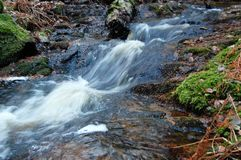 Winter stream. The water in the creek does not freeze Royalty Free Stock Images