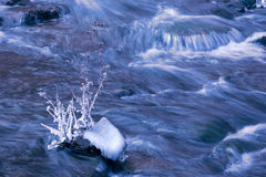 Winter stream Royalty Free Stock Photos