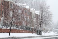 Winter Street in Fairfax Royalty Free Stock Image
