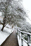 Winter street in Luxembourg Stock Photo