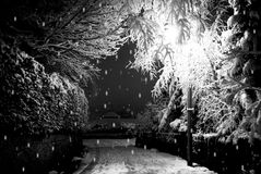 Winter Street. A snowy street lit by a lamp post Royalty Free Stock Photos