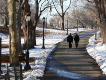 A winter stroll. A cute couple stroll through the park royalty free stock photo