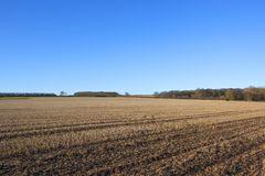 Winter stubble fields and woodlands. Straw stubble field in winter near woodland and hedgerows under a blue sky in the yorkshire wolds Royalty Free Stock Photos