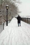 Winter-Sturm, Central Park, New York. stockfotografie