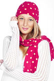 Winter style Royalty Free Stock Image