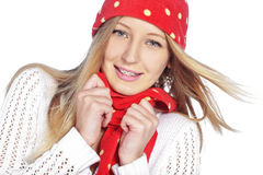 Winter style Royalty Free Stock Photography