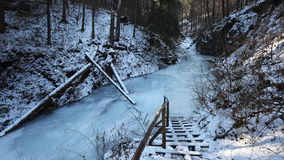 Winter in Sucha Bela gorge , Slovensky raj National park , Slovakia Stock Photos