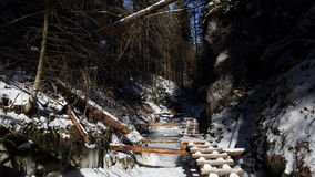 Winter in Sucha Bela gorge , Slovensky raj National park , Slovakia Stock Images