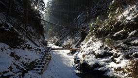 Winter in Sucha Bela gorge , Slovensky raj National park , Slovakia Stock Photography