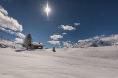 Winter_sun Foto de Stock Royalty Free