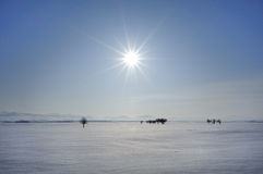 Winter sun Stock Photography