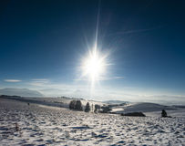 Winter sun Royalty Free Stock Photos