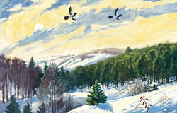 Winter sun. Winter landscape, with a bright sun and two flying birds vector illustration
