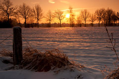 Winter sun on arable Stock Images