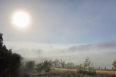 Winter sun in foggy landscape Stock Images