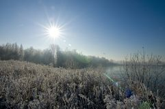 Free Winter Sun Landscape Royalty Free Stock Image - 3895546