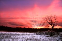 Winter sun set Royalty Free Stock Photos