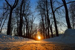 Winter sun shines right on the horizon. Bright sunset, Winter sun, a Walk in the Park in winter Stock Images