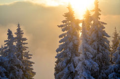 Winter sunlight on mountain Royalty Free Stock Photo