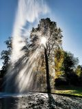 Refractions of Sunlight Through Trees. Winter sunlight refracted by trees at a water fountain with late autumn colours stock photo