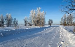 Winter sunny day. Winter road and trees cevered with hoarost Royalty Free Stock Photo