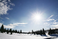 Winter sunny day Stock Photos