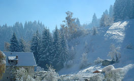 Winter 1. A Sunny winter day in the mountains of Bulgaria Royalty Free Stock Photo