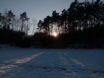Winter sunny ladscape. Winter photo with trees, snow, sunny Stock Photo