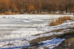 Winter sunny landscape, view of the lake in the forest in Ukrain. E Royalty Free Stock Photos