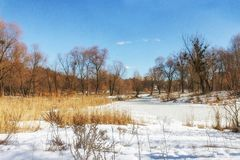 Winter sunny landscape, view of the lake in the forest in Ukrain. E Stock Photos