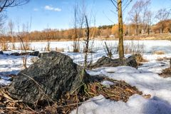 Winter sunny landscape, view of the lake in the forest in Ukrain. E Royalty Free Stock Image