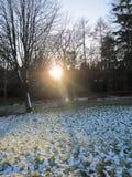 Winter Sunrays Royalty Free Stock Photo