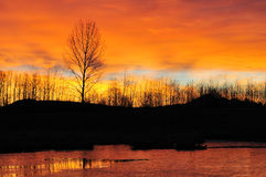 Winter Sunrise Stock Photos