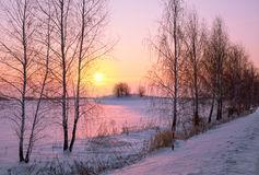Winter sunrise. Beautiful winter sunrise in a countryside royalty free stock image