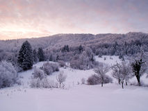 Winter sunrise. Sunrise on a snow covered mountain Stock Photography