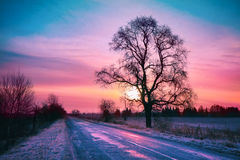 Winter sunrise Royalty Free Stock Images