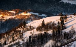Winter sunrise in Carpathian mountains. Beautiful landscape with snowy hillsides Royalty Free Stock Photo