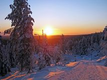 Winter Sunrise in Finland Royalty Free Stock Images