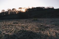 Winter sunrise. Royalty Free Stock Photo