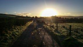 Winter Sunrise- Ireland Royalty Free Stock Photos