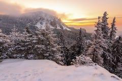 Winter sunrise landscape. Beautiful winter sunrise in the mountains Stock Photos