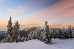 Winter sunrise landscape. Colorful winter sunrise in the mountains Royalty Free Stock Photos