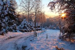 Winter sunrise landscape. With road Royalty Free Stock Image