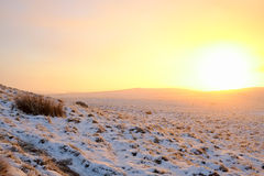 Winter sunrise at the moors in North Yorkshire Stock Photos